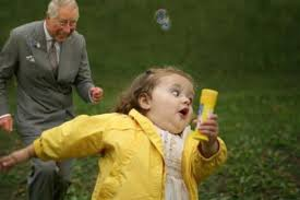 Cheezburger Meme Maker - meme of the day prince charles being attacked by things prince