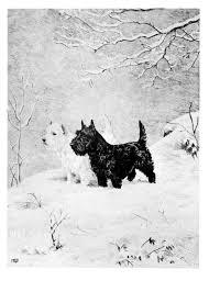 142 best scottie illustrations vintage dawson dennis kimse