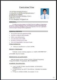 resume templates word doc resume template resume format in word document free