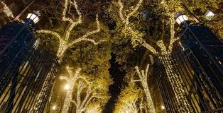 When Do They Light The Tree In Nyc Columbia University In The City Of New York