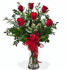 Dozen Roses Half Dozen Roses Roses In Defiance Oh Fancy Petals