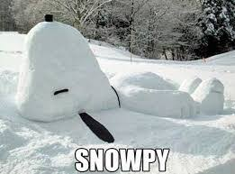 Funny Snow Memes - snow meme best list of funny snow storm pictures