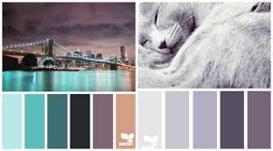 kombination farbe mit grau welche farbe für küche 85 ideen für fronten und wandfarbe
