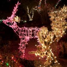 308 best holiday lights images on pinterest christmas time
