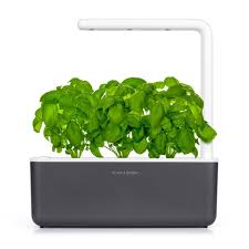 indoor herbs to grow the smart garden 3 indoor herb garden click u0026 grow