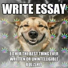 Memes About Writing Papers - write essay either the best thing ever written or unintelligible