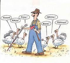 happy canadian thanksgiving thanksgiving thanksgiving