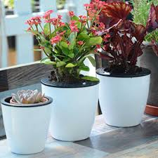 fashioable automatic self watering flower plants pot put in floor