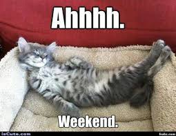 Meme Weekend - now this is the way to enjoy the weekend almost me on my weekends