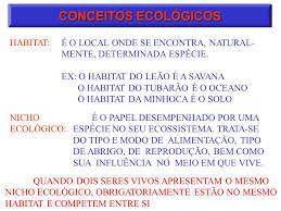 ecologia definição estudo das relações dos seres vivos entre si e