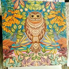 secret garden colouring book postcards 145 best johanna basford images on books mandalas and
