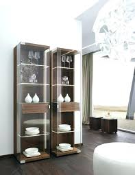 modern curio cabinet ideas mesmerizing modern china cabinet somerefo org