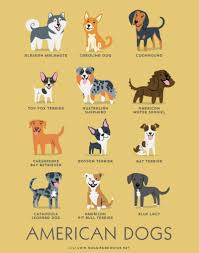 australian shepherd cartoon adorable drawings of dog breeds grouped by their place of origin