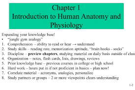 What Is Human Anatomy And Physiology 1 Powerpoint Lecture Outlines To Accompany Hole U0027s Human Anatomy And