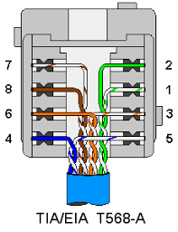 cat5 wiring diagram for how to wire an ethernet wall socket