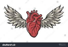 anatomical heart wings tattoo signsymbol color stock vector