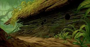 king of backdrops animation backgrounds the lion king