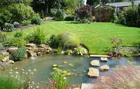 Backyard Pond Building Pond Building Basics Where Do I Start