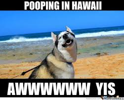 Hawaii Memes - in hawaii by serkopat meme center