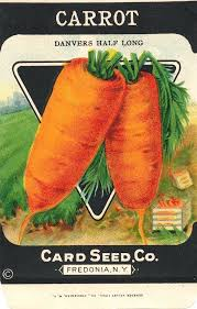 seed packets 829 best labels seed packets and tags images on