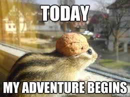 Adventure Meme - today my adventure begins adventure chipmunk quickmeme