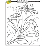 easter free coloring pages crayola