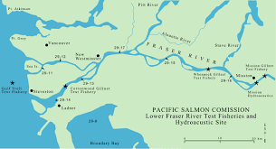 Canadian River Map Test Fishing Results Pacific Salmon Commission