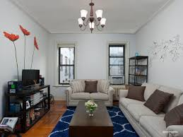179 ocean parkway 3f brooklyn ny 11218 brooklyn coops living room