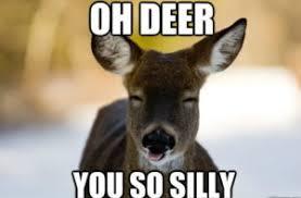 Funny Deer Memes - deer hunting meme funny deer pictures funny deer hunting pics