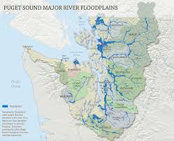floodplain projects open doors to fewer floods and more salmon
