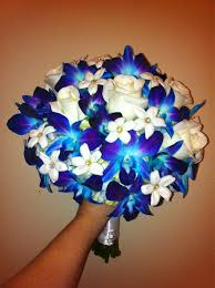 Blue Orchid Flower - best 20 blue orchid wedding ideas on pinterest blue orchids
