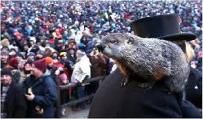 groundhog day statistics