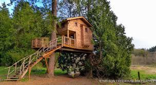 kodama zome brands we love kodama zomes nelson treehouse