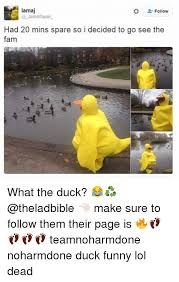 Funny Duck Meme - 25 best memes about duck funny duck funny memes