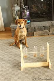 best 25 dog treat dispenser ideas on pinterest diy dog treats