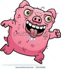 ugly pigs stock images royalty free images u0026 vectors shutterstock