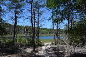 Chipley Florida Map by Florida Waterfront Property In Marianna Chipley Bonifay