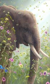 robert bissell contemporary fine art and prints