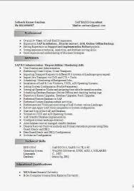 Hr Consultant Resume Sample by Sap Basis Consultant Resume Format Sap Basis Consultant Resume