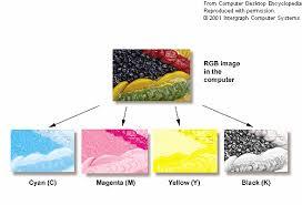 spot color pms vs cmyk 4c process which is best rose city
