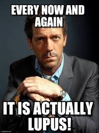 Lupus Meme - every now and again dr house meme on memegen
