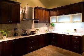 Beech Kitchen Cabinets by Bathroom Pleasant Beech Espresso Kitchen Cabinet Cabinets Photos