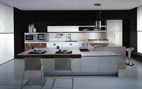 Picture Of Black And White Kitchen Design by Kitchen Phenomenal Kitchen Designs For White Appliances