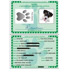 Famosos RG Animal - A Identidade do Seu Pet (rosa) #ED49