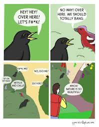 So Beautiful Meme - whoa nature is so beautiful funny pinterest comic