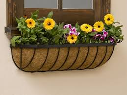 What To Plant In Window Flower Boxes - window boxes from windowbox com fine flower box gardening