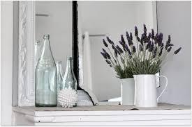 Tall Indoor Plants Low Light Uncategorized Bedroom Plants Indoor House Plants Tall Red Vase