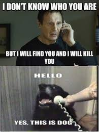 T Dog Meme - hello yes this is dog i will find you and i will kill you