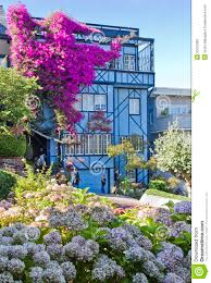 blue house with flowers editorial photography image 50570382