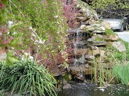ornamental ponds